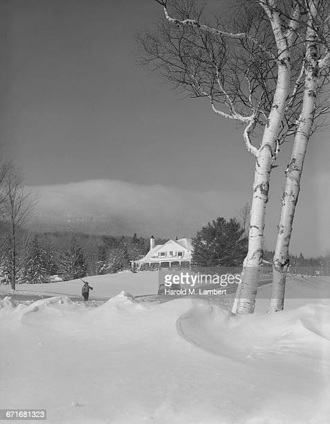snowy landscape with trees and house - {{ contactusnotification.cta }} stockfoto's en -beelden