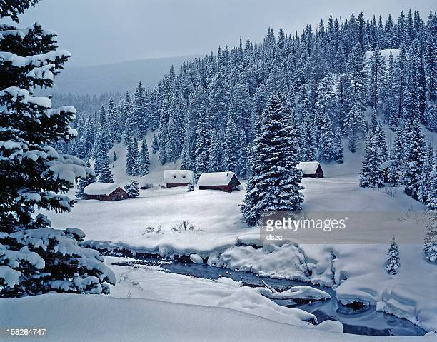 snowy log cabins in ethereal moonlight - colorado stock pictures, royalty-free photos & images