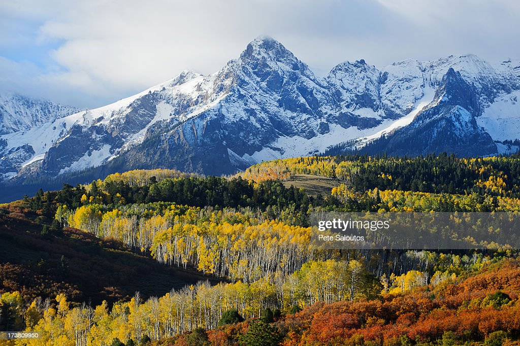 Snowy mountain and trees in rural landscape : Stock Photo