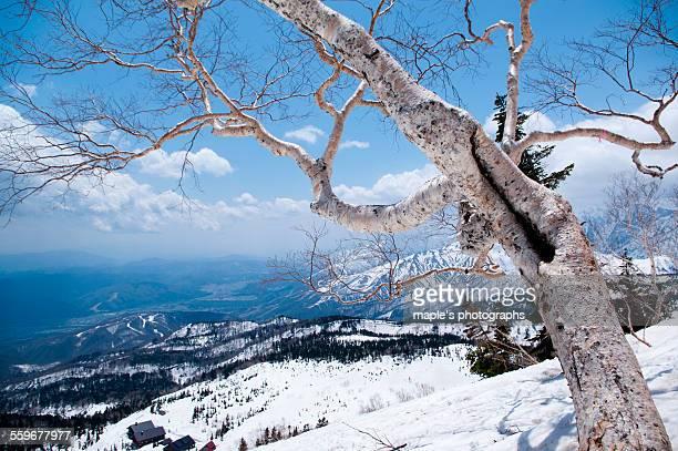 Snowy mountains, Hakuba village, Japan