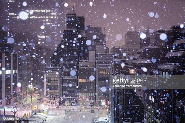 A Snowy Night in Kyobashi, Tokyo