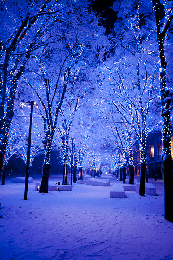 Snowy Night - gettyimageskorea