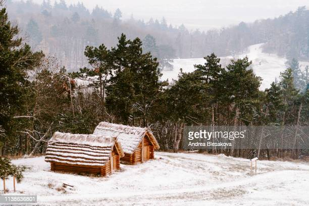 snowy old wooden cottages on a forest hills - slovakia stock pictures, royalty-free photos & images