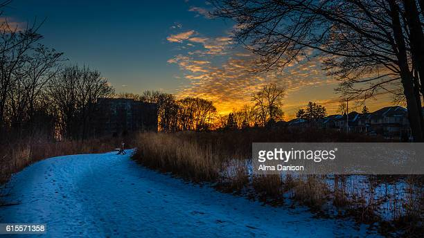 snowy path under sunset light - alma danison stock photos and pictures