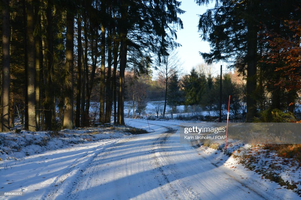 Snowy road during winter : Stock Photo