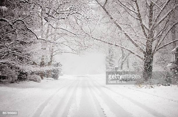 snowy road in snow storm. - blizzard stock pictures, royalty-free photos & images