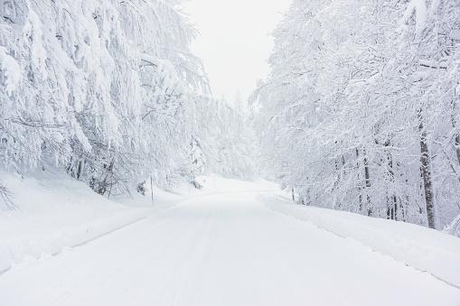 Snowy road 1066508460