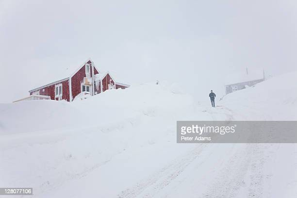 snowy road, tasiilaq, greenland - peter adams stock pictures, royalty-free photos & images