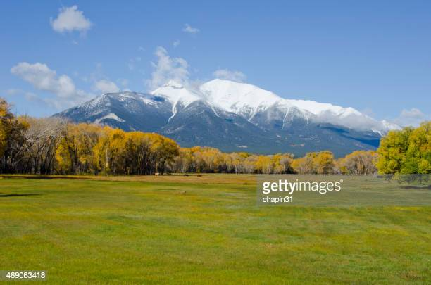 Snowy Rocky Mountains in the distance above a green field