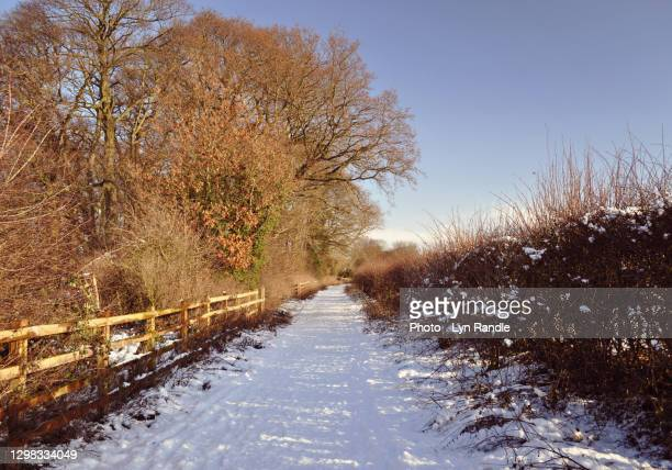snowy rural winter scene. - rural scene stock pictures, royalty-free photos & images
