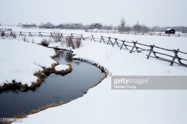 snowy stream - casa estilo rancho fotografías e imágenes de stock