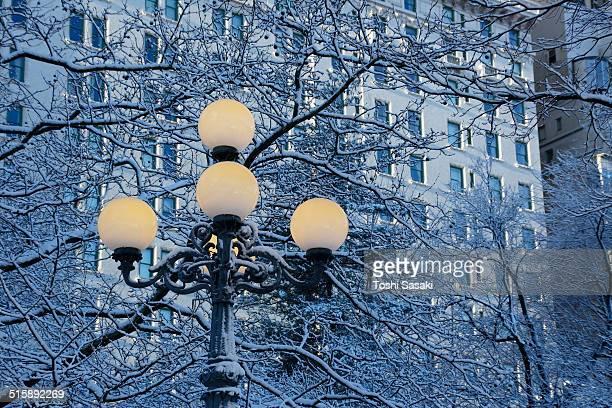 snowy street lights in front of plaza hotel. - hotel plaza manhattan stock-fotos und bilder