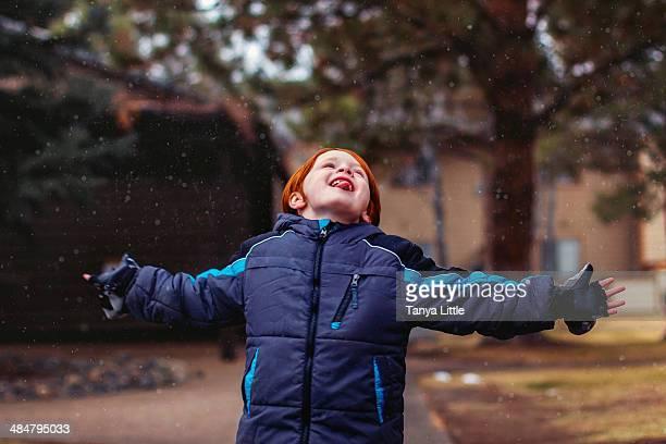 snowy treat - 指なし手袋 ストックフォトと画像