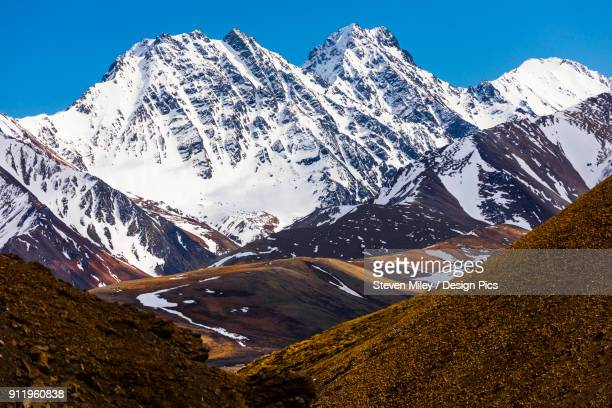 snowy, unnamed mountains rise above the tundra of denali national park in early summer - miley fotografías e imágenes de stock