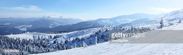 Snowy view in Carpathian Mountains