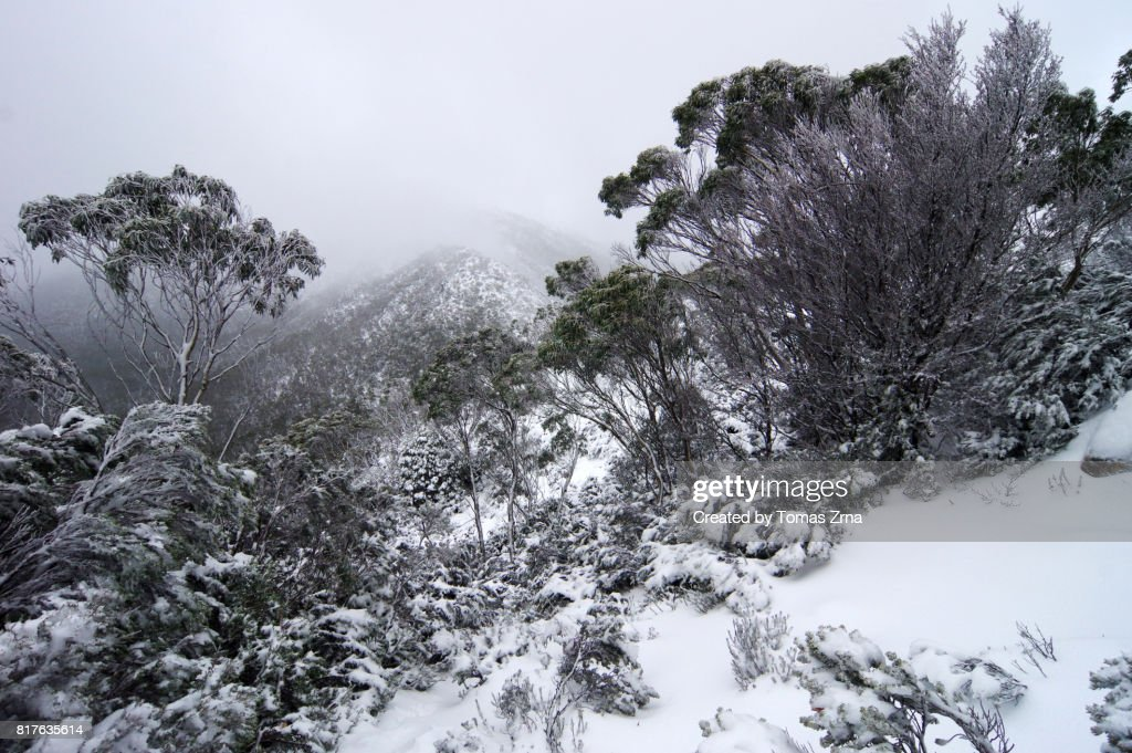 Snowy views from the Labyrinth : Stock Photo