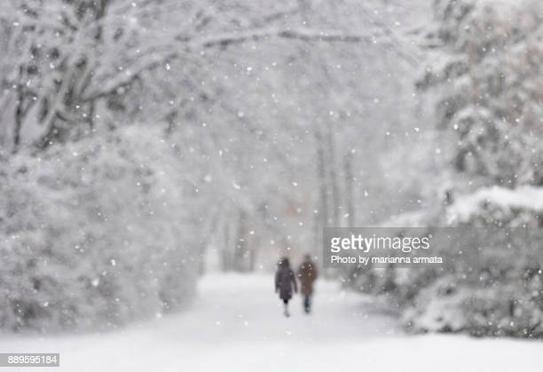 snowy walk - winter weather stock photos and pictures