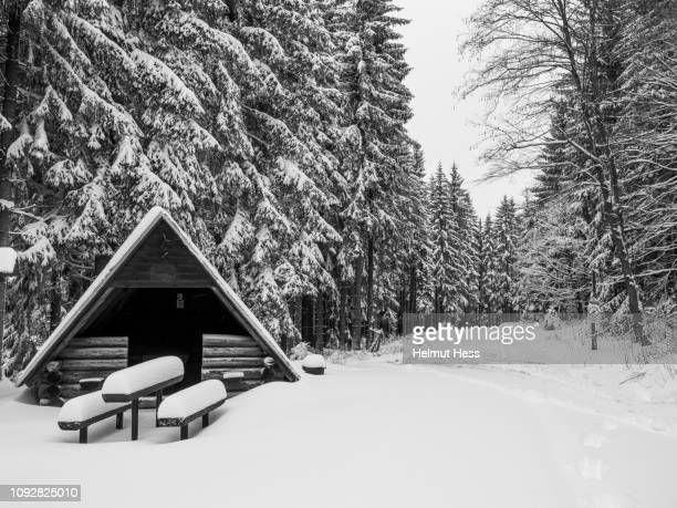 snowy winter landscape - thuringia stock pictures, royalty-free photos & images