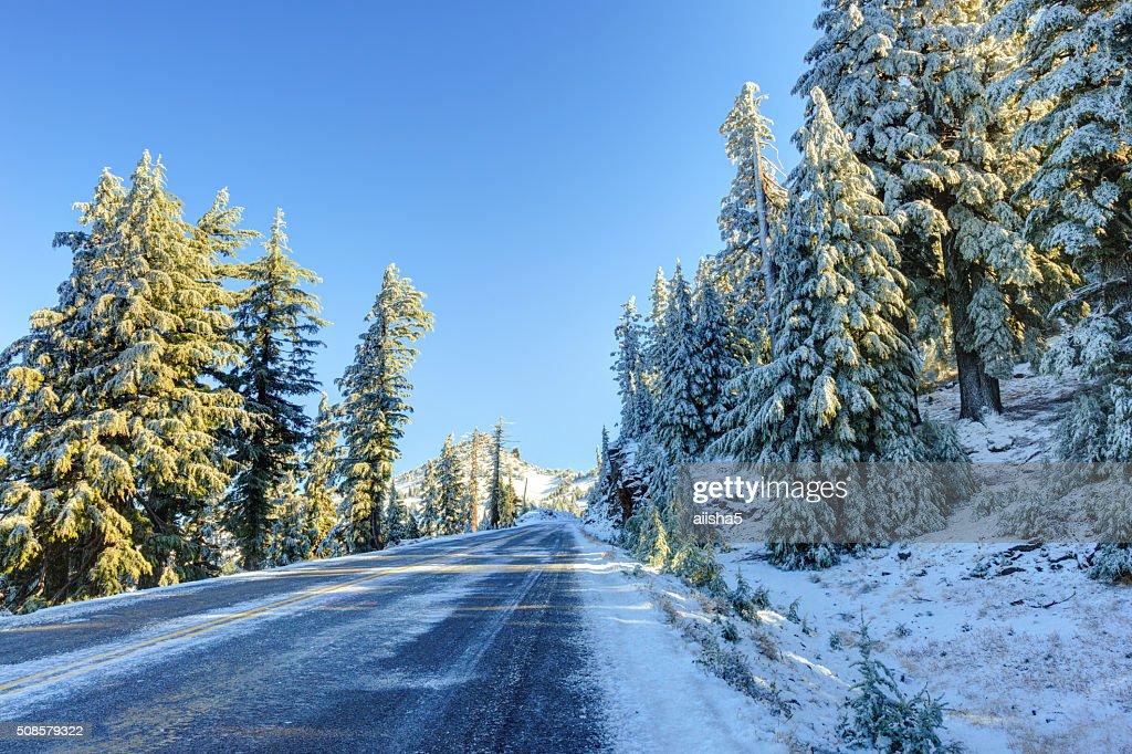 Snowy winter road : Stock Photo