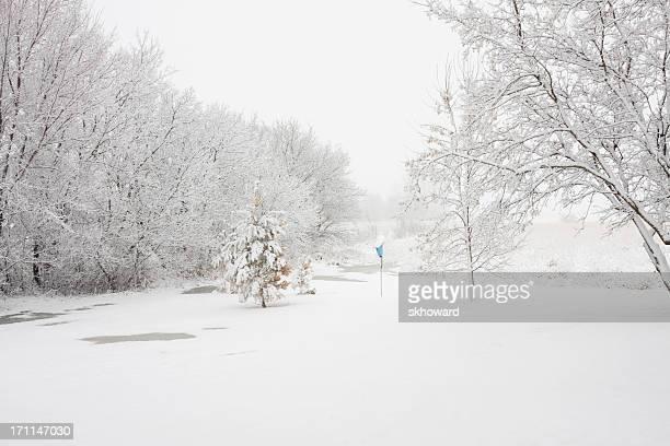 Schnee Winter-Szene mit Bäumen und Vogelhäuschen