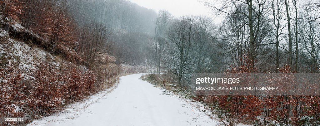 Snowy winter trail : Stock Photo