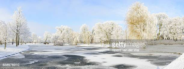 "snowy wintry landscape in the city park of kampen, holland - ""sjoerd van der wal"" stockfoto's en -beelden"