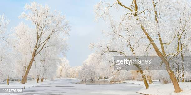 snowy wintry landscape in the city park of kampen, the netherlands - overijssel stock pictures, royalty-free photos & images