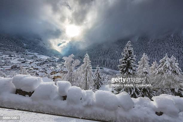 Snowy woods Filisur Switzerland