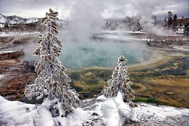 Snowy Yellowstone Wall Art
