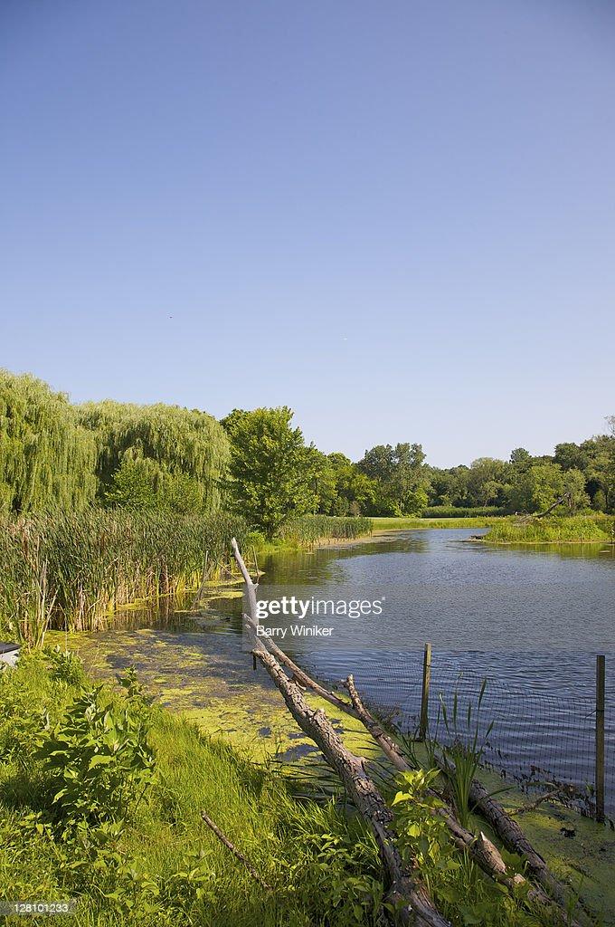 Snug Harbor Cultural Center and Botanical Garden, Staten Island, New York : Stock Photo