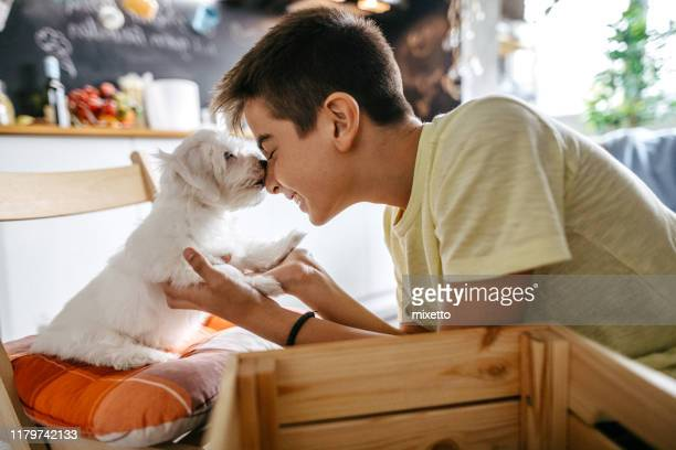 snuggling with his pet dog - domestic animals stock pictures, royalty-free photos & images