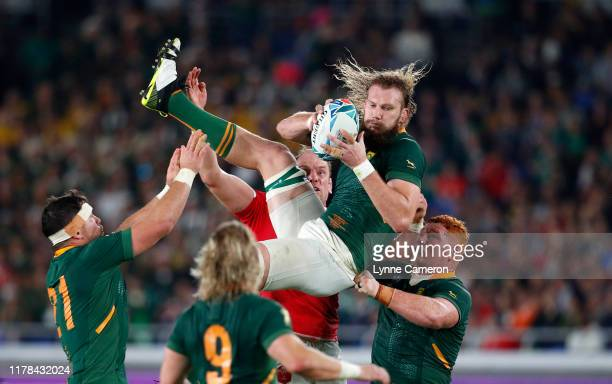Snyman of South Africa wins a line out during the Rugby World Cup 2019 SemiFinal match between Wales and South Africa at International Stadium...