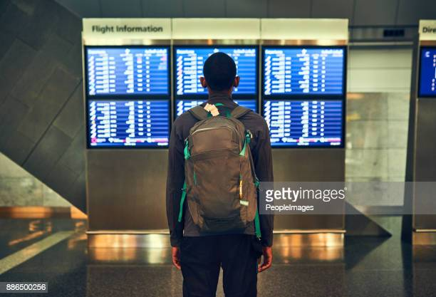 so many flights going out - arrival stock pictures, royalty-free photos & images