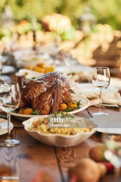 so much food to choose from - thanksgiving background stock photos and pictures