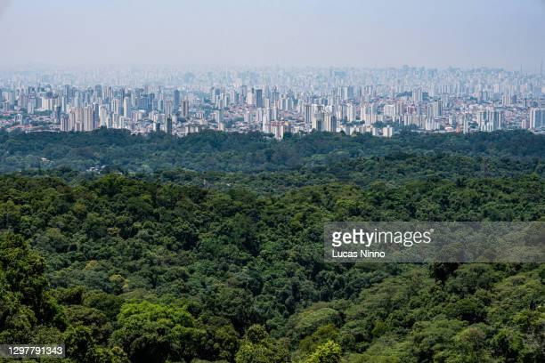 são paulo city and atlantic forest - etalement urbain photos et images de collection
