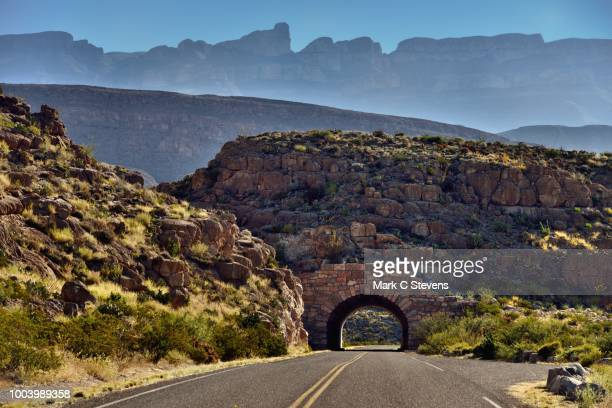 so there i was driving along a road in big bend national park... - chihuahua desert stock pictures, royalty-free photos & images