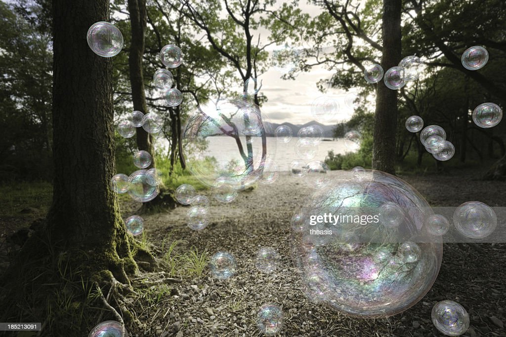 Soap Bubbles In A Forest : Stock Photo