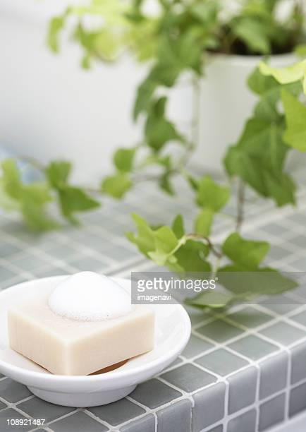 soap - toilet planter stock pictures, royalty-free photos & images