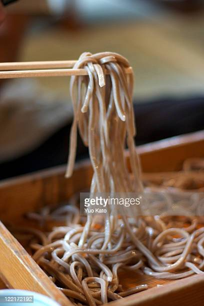 soba noodle - soba stock pictures, royalty-free photos & images