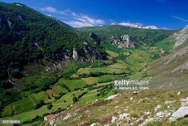 sobra valley in cantabria - alamany fotografías e imágenes de stock