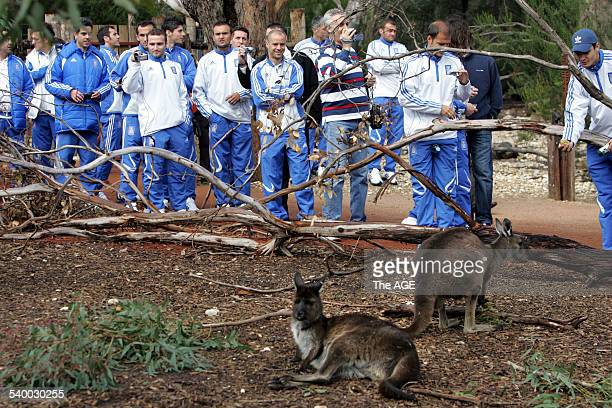 Soccer, 2006. Greek Soccer team visit the Melbourne Zoo today on 23rd May, 2006. THE AGE NEWS Picture by WAYNE TAYLOR.