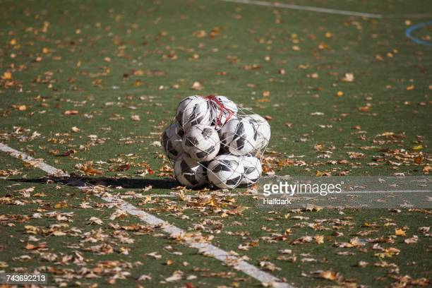 soccer balls in netting amidst fallen dry leaves on playing field - net sports equipment stock pictures, royalty-free photos & images
