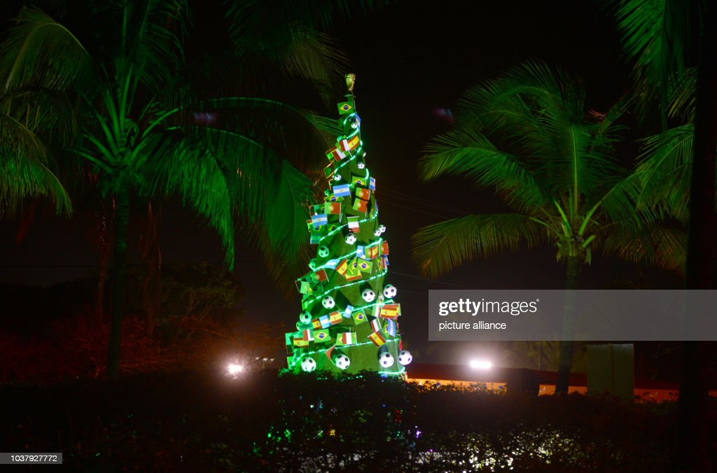 impressions of brazil christmas tree news photo
