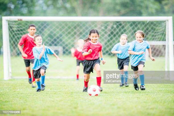 soccer field - soccer stock pictures, royalty-free photos & images