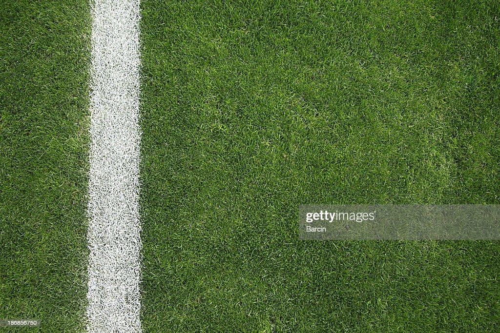 soccer field grass. Green Grass Background; Soccer Field
