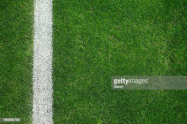 soccer field - grass stock pictures, royalty-free photos & images