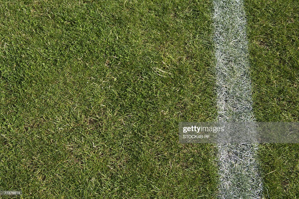 Soccer field : Photo