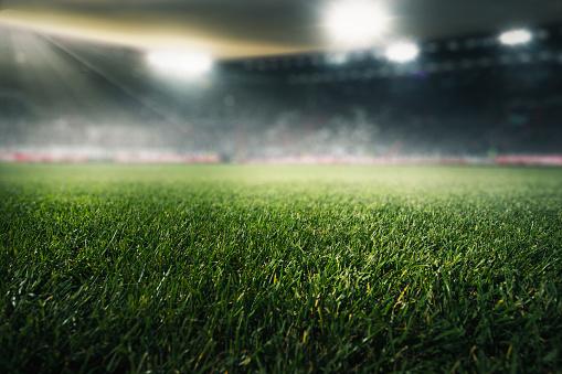 soccer field 989422224
