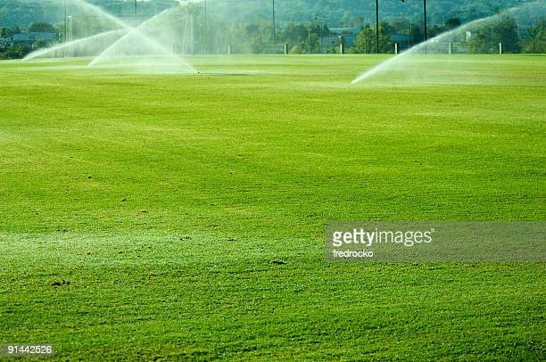 soccer field with soccer goal at park - cricket field stock pictures, royalty-free photos & images