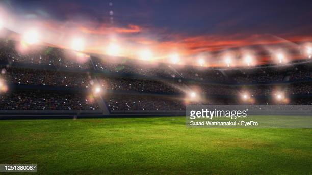 soccer stadium, green grass and night sky. 3d renering - football pitch stock pictures, royalty-free photos & images